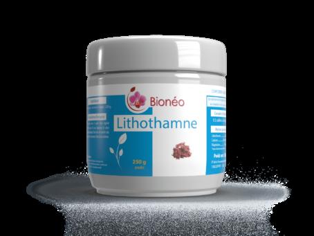 Lithothame en poudre 250 gr.